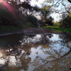 inland trail