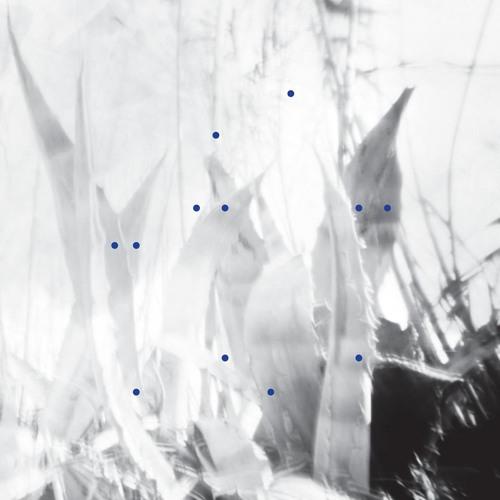 Crypto Tropic / mini LP on Le Cabanon records