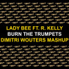 Lady Bee Ft R Kelly - Burn The Trumpets (Dimitri Wouters Mashup)