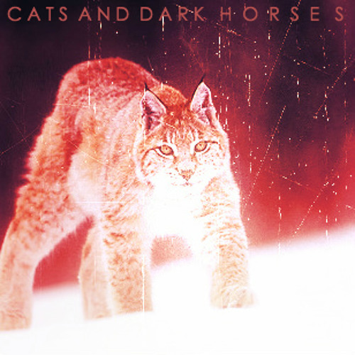 Cats & Dark Horses (Darkmatter Remix)FREE DOWNLOAD