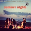 Summer Nights (Avicii / Calvin Harris / Coldplay / Bob Marley / Royal Gigolos)