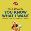Klle Dawid - You Know What I Want (GIOC Remix)OUT NOW!!