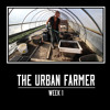 It's Winter, Know the Farm Numbers - The Urban Farmer - Week 1