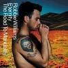 Robbie Williams - Eternity (edosimo Cover)