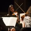 Franz Joseph Haydn – String Quartet Opus 76, No. 2 (