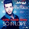 John W Feat Gutto Salles - So In Love (Audio Floor Remix)