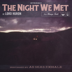 Lord Huron - The Night We Met (As Seas Exhale Cover)