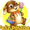 SPOT LOLLY POP- COELHINHO DA PASCOA