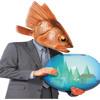 Flávia Garcia - Le Bocal de M. Redfish