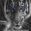 Survivor - Eye Of The Tiger (Housejunkee & Marcel Martenez Rework)