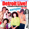 Flight Of The Bird by Ted Nugent and the Amboy Dukes Detroit LIVE! circa 1968
