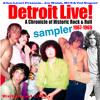 Blue Bird by Joe Walsh & James Gang DetroitLIVE! 192k