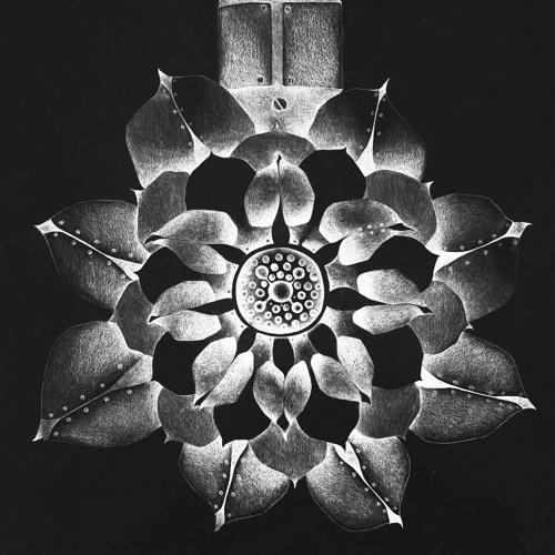 La Fleur - Perennial Place Mix