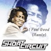 James Brown - I Feel Good (short Circuit Remix) *Exclusive premier on TrapStyles