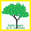 Guided Imagery Dr Lemons