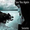 What If I Never See You Again