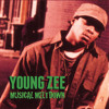 Young Zee - Musical Meltdown CD/Tape (Snippets)