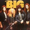 Wild World - Mr. Big cover
