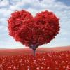 Люблю И Верю (Love And Trust)