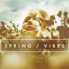 Groove Amigo Spring Vibes mp3