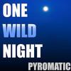 Download One Wild Night Mp3
