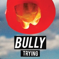 Bully Trying Artwork