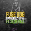 FUSE ODG - Dangerous Love Ft. Sean Paul (House Random Mix)