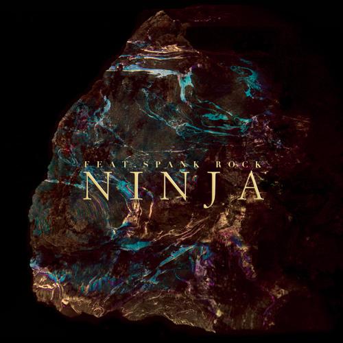 Ninja (feat. Spank Rock)