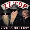 ZZ Top - Billy Gibbons - Dusty Hill Concert Coca - Cola 600 CMS May 24th