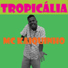 04 - MC Kaiquinho SP - Cade Tereza (Jorge Ben Jor)