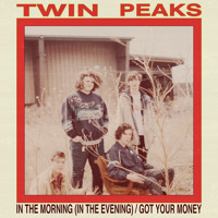 Twin Peaks Got Your Money Artwork