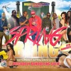 SPRING BLING Pt 5 25 April 2k15 at Piccadilly Banqueting Suite by Roxxiess Sound