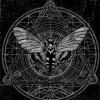 WRONG BROTHERS - Moth Man