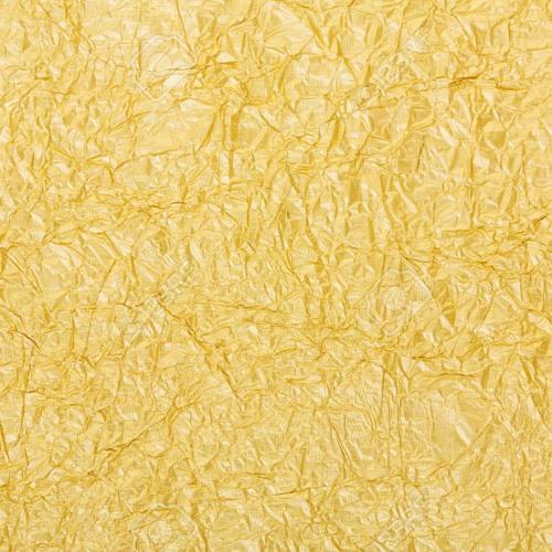 Gold Front - Jumanji