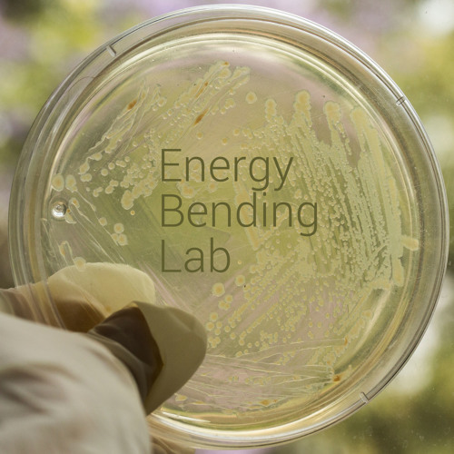 Energy Bending Lab / Non Human rhythms