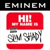 My Name Is (Eminem Rapcore Cover)