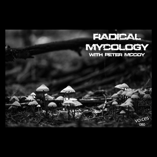 Radical Mycology with Peter McCoy (PVP080)