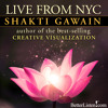 Shakti Gawain Live From New York City- Preview 1