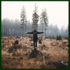 Old Pine (Elkoe Remix)