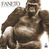 Katie Got Bandz - Faneto (Remix)