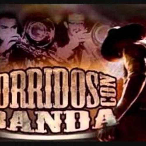 Banda Mix Corridos Dj Robert (La GranD)Los Hijos De La Machaca