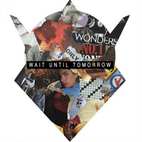 Prince Fox - Wait Until Tomorrow