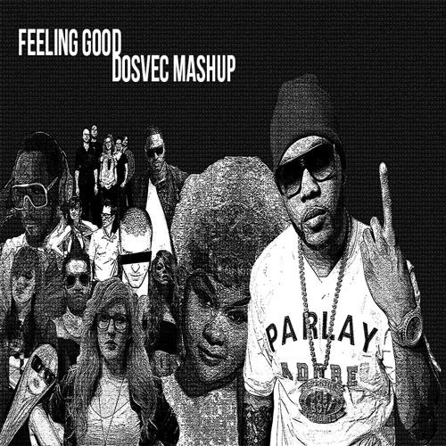 "DOSVEC ""Feeling Good"" Mashup"