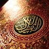 110 Al Nasar By Mishary Rashid Al Afasy - Tilawat And Translation ( URDU )