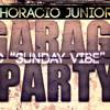 Horacio Junior - Party (DJD