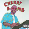 Tyler The Creator - Fucking Young/Perfect(Cherry Bomb)Instagram @thiscoolblackdude