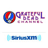 Peter Shapiro Talks GD50 on Tales from the Golden Road