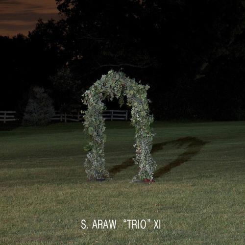 """""""Trellis"""" from GAZEBO EFFECT (2015) by S. Araw """"Trio"""" XI"""