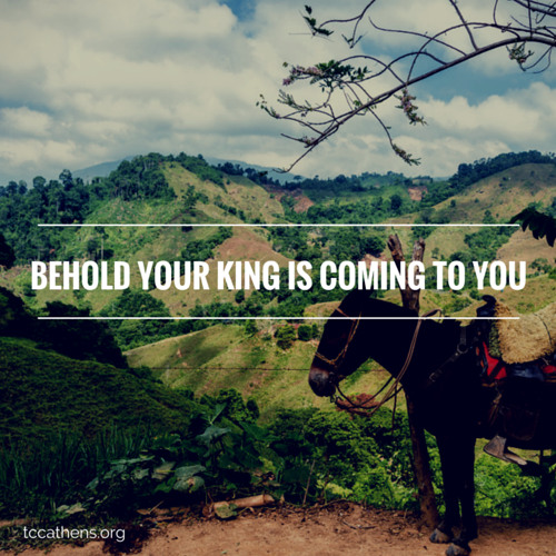 Behold Your King is Coming To You (Matthew 21:1-10)