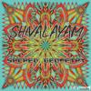 Shivalayam - Hexagram (Original Mix) - (Sacred Geometry EP).mp3